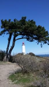 Leuchtturm_Hiddensee_hoch